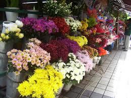 Florist bunga hias