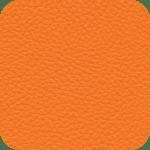 7003-Orange