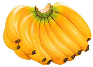 buah pisang dapat mengurangi dampak rokok