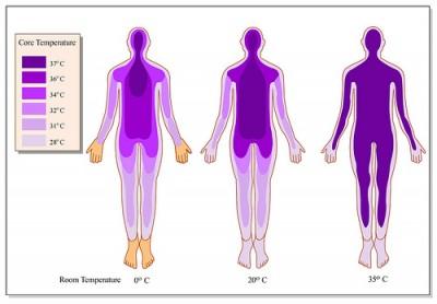 Suhu Badan Yang Meningkat