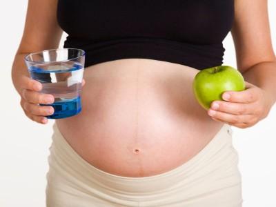 Tips Pola Makan Sehat Pada Ibu Hamil
