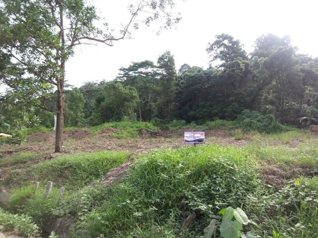 Periksa Status Tanah