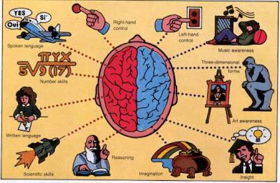 Ternyata Otak Bisa Rusak Karena Hal-Hal Berikut