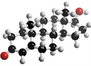 Cara Alami Meningkatkan Kadar Hormon Testosteron