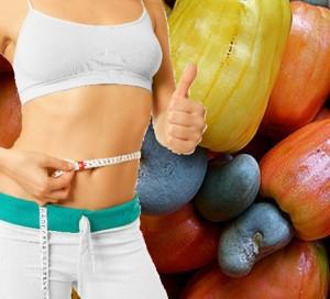 Penurunan Berat Badan Dengan Mengkonsumsi Buah Jambu Mete